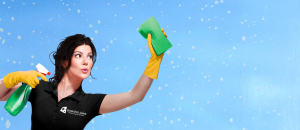 Diamond Shine Window Cleaning