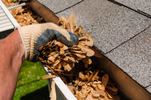 Eavestrough Cleaning Toronto