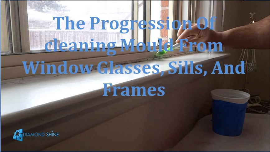 cleaning mould from window
